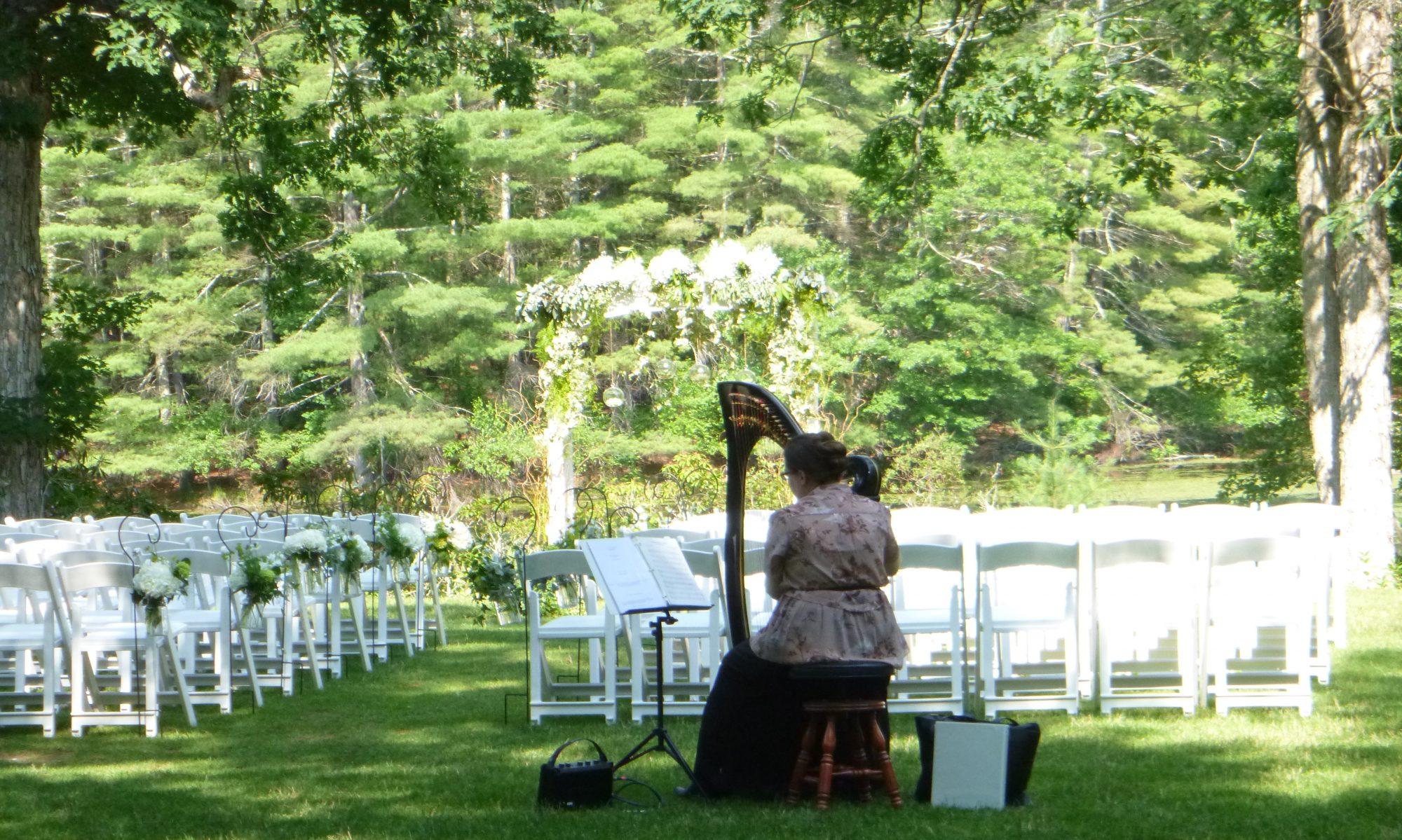Liz Ammerman, Harpist